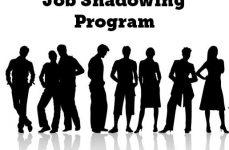 Job Shadowing – Acompanha um Profissional