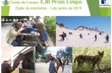 Saída de Campo | Praia limpa